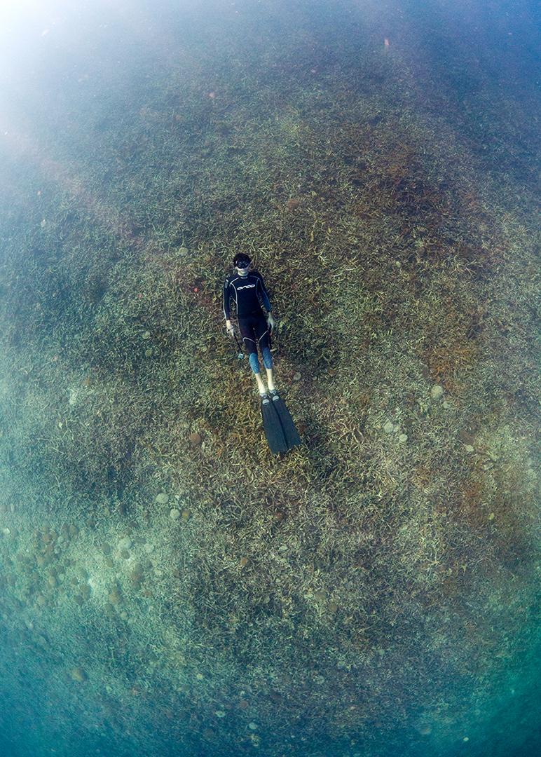 Freediver - Koh Tao, Gulf of Thailand